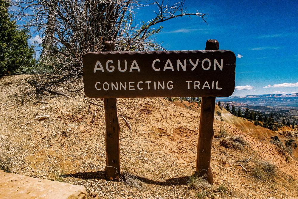 The Agua Canyon trailhead