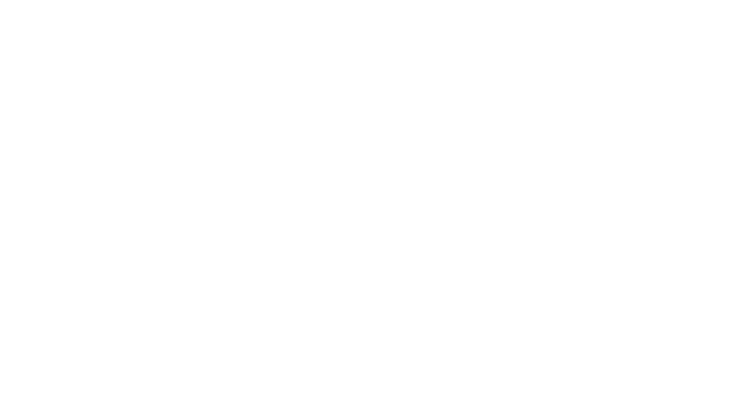 Neverland Balloons and Facepainting