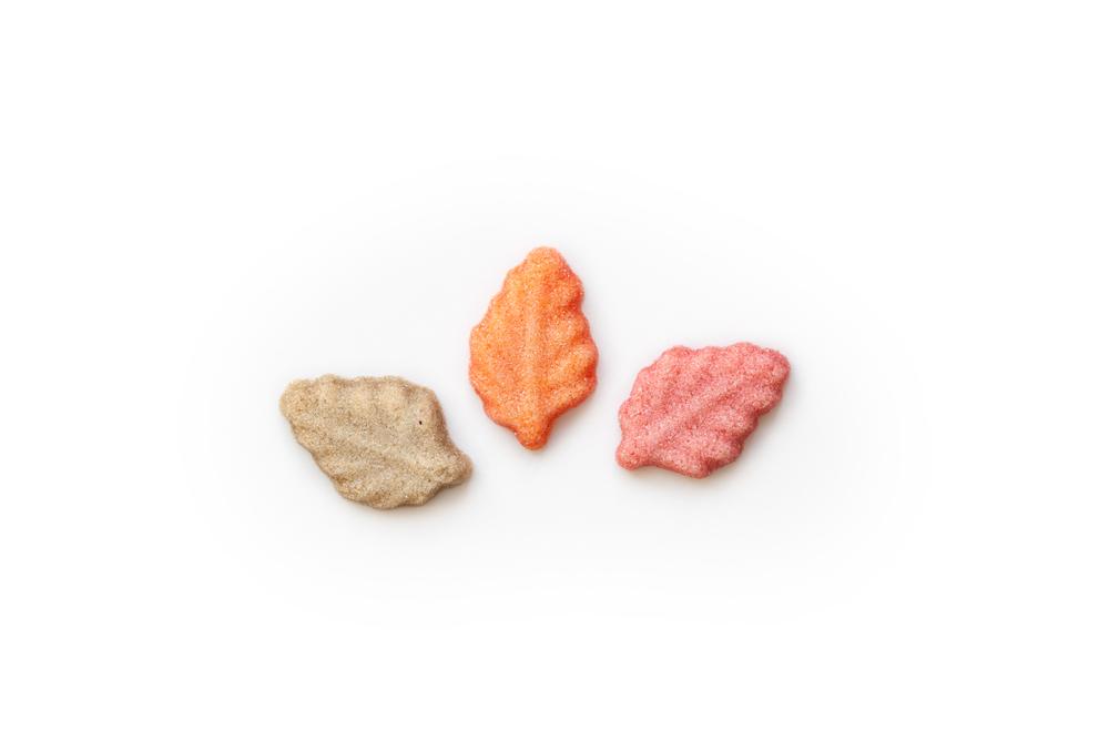leaves3.jpg