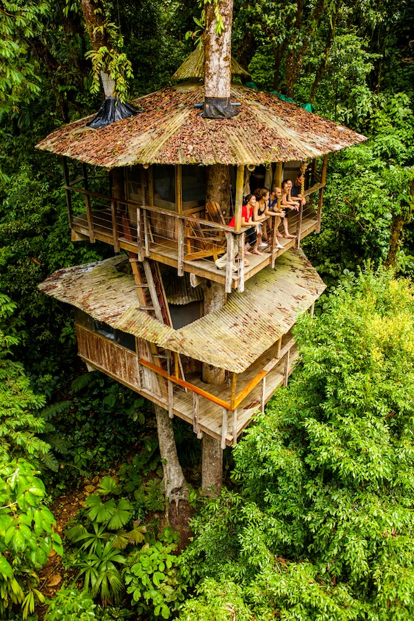 Treehouse & Eco-Community Yoga RetreatJuly 2nd - 5th, 2018 - Daily Yoga, Evening Meditation & Satya Circle, Unlimited hiking, waterfalls and adventuring around the trails of the Treehouse Eco-Community.Prices starting at $475