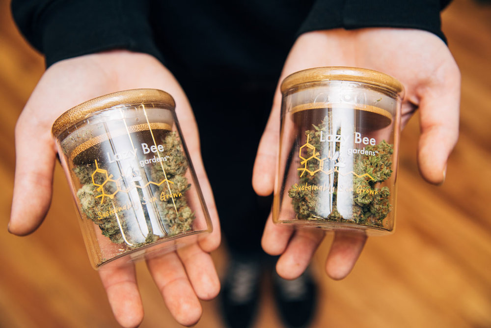 hashtag-cannabis-fremont-lazy-bee-gardens-9.jpg