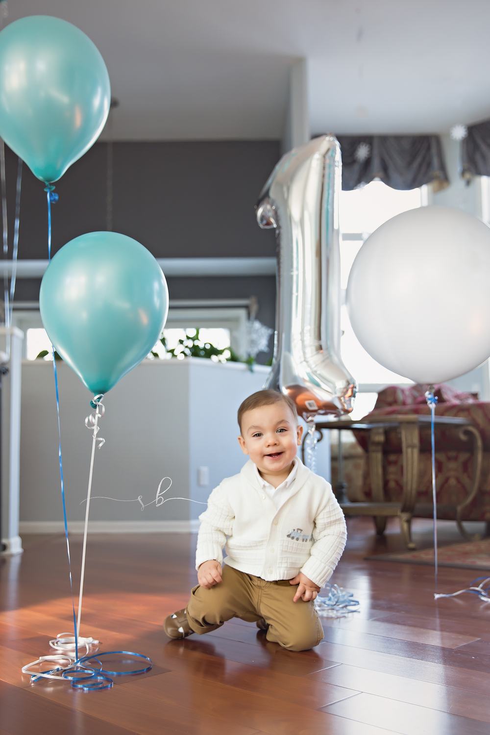 first birthday photography