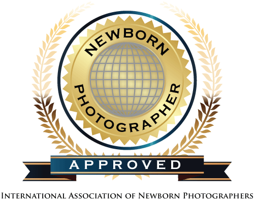 INP-logo.png
