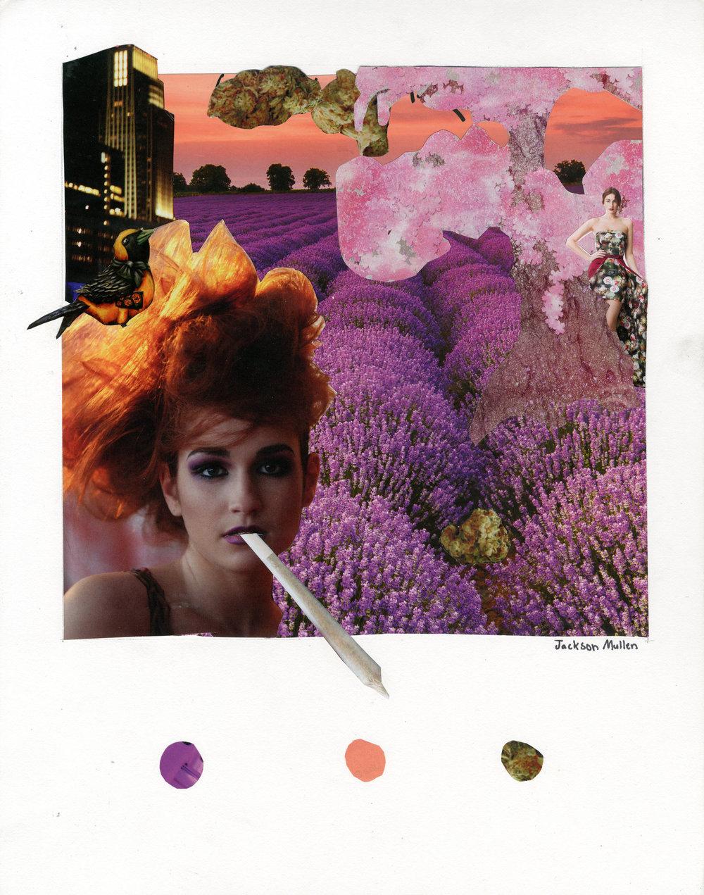 Jackson Mullen, color collage