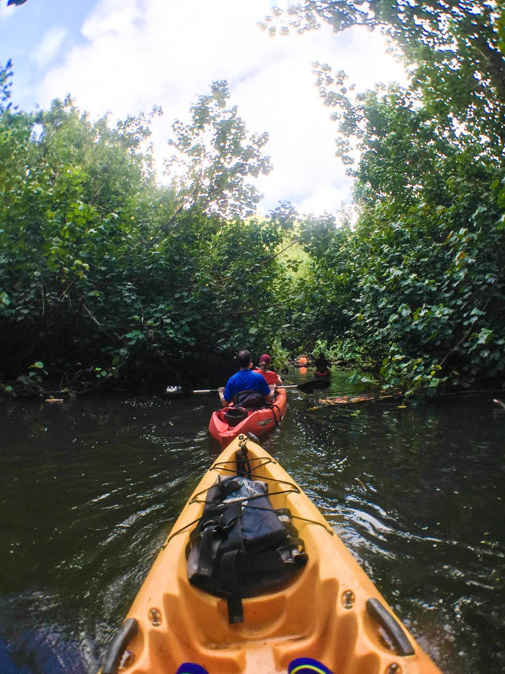 Divine Tio Wailua River