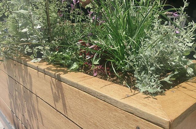 Reclaimed hardwood self watering planters @girdlers_cafe in Manly.