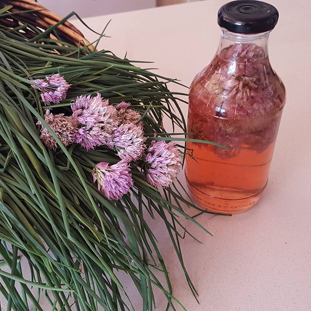No editing to this image has been done...it wouldn't be fair to the beautiful colour of our Chive Flower Apple Cider Vinegar, brewed this month.