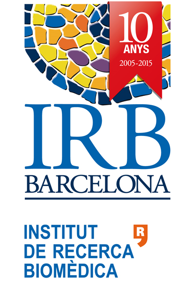 IRB10.jpg