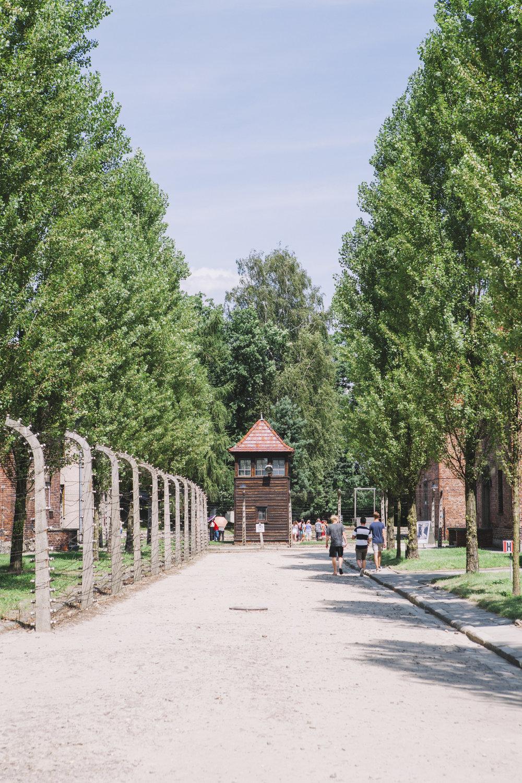 Auschwitz-Birkenau_9350.jpg
