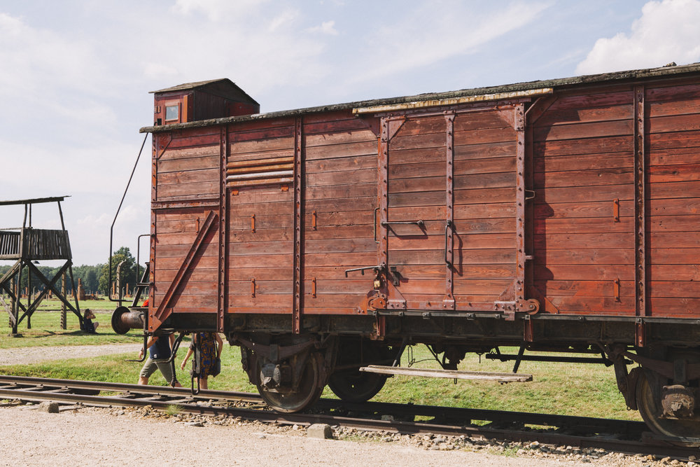 They would force 100 people to squeeze into these train carriages at one time to Birkenau.
