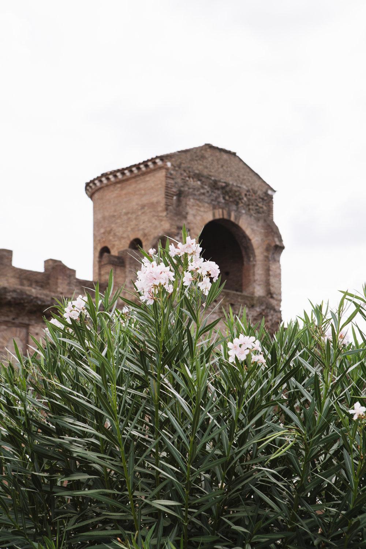 Rome_1778.jpg