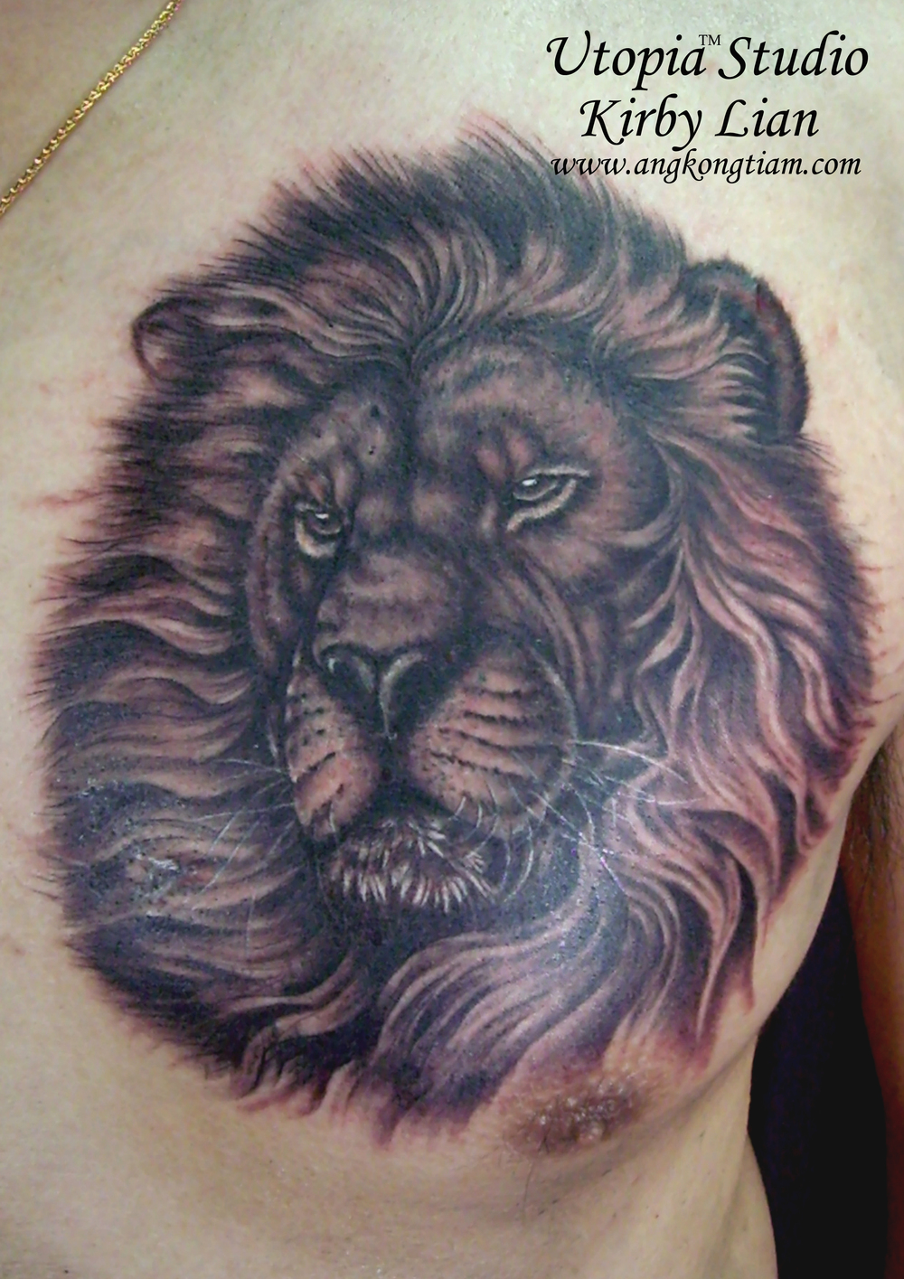 Lion portrait on chest.jpg