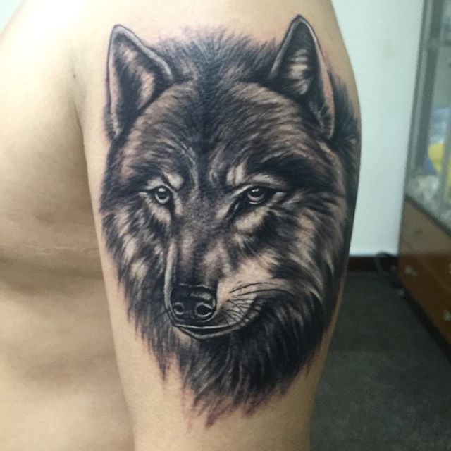 #tattoo #tattoos #ink #wolf #wolftattoo #portrait #animalportraits #utopiastudio