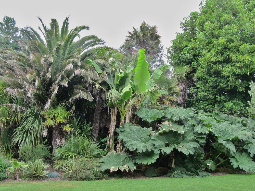 Penzance,_Morrab_Gardens_01.jpg