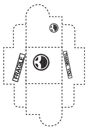 BDPIBoxDesign.jpg