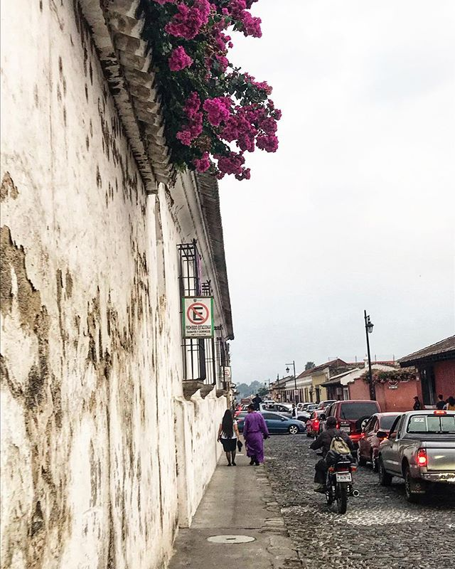 Happy #WanderlustWednesday from Antigua! This picture captures so many of my first impressions of this town. Bougainvillea, old walls, and a couple dressed to participate in a procession.  __________________________________ #antigua #guatemala #latinamerica #centralamerica #bougainvillea #younglove #semanasanta #streetscenes #travel #wander #wanderlust #theconstantlycurious #ichosetowander #abmtravelbug