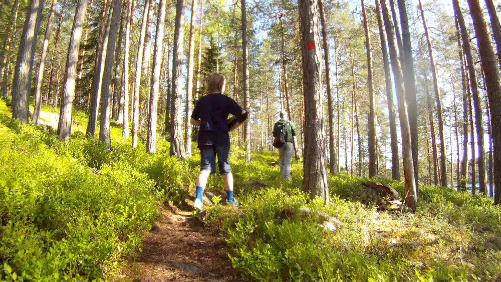 Orrainpolku trail
