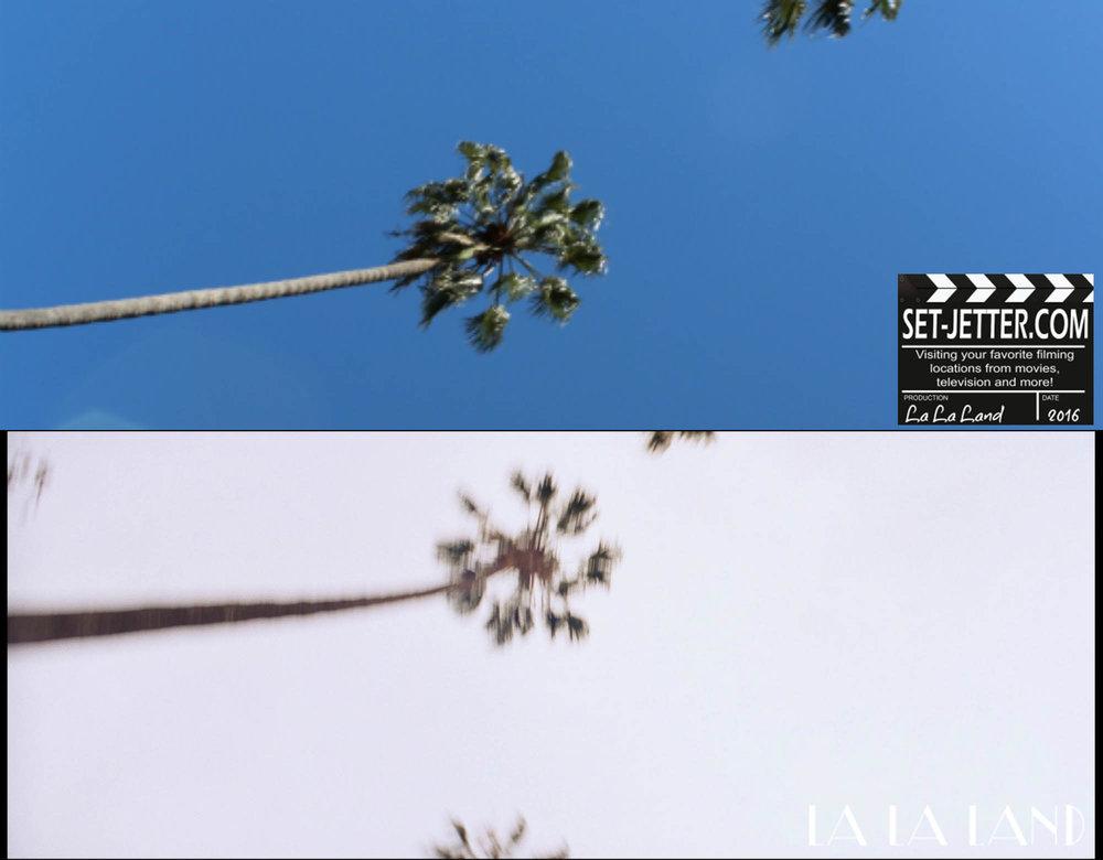 LaLa-066.jpg