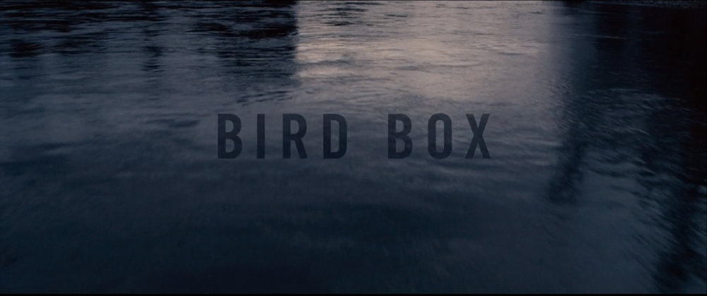 Bird 001.jpg