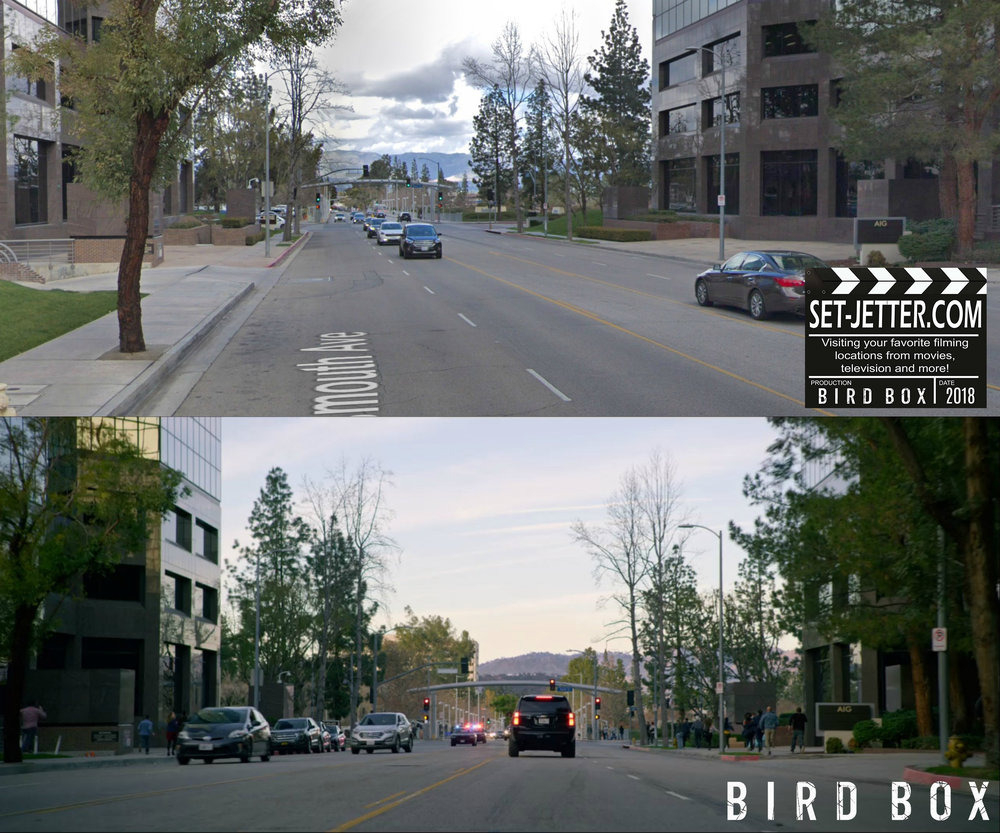 Bird Box Woodland 01.jpg