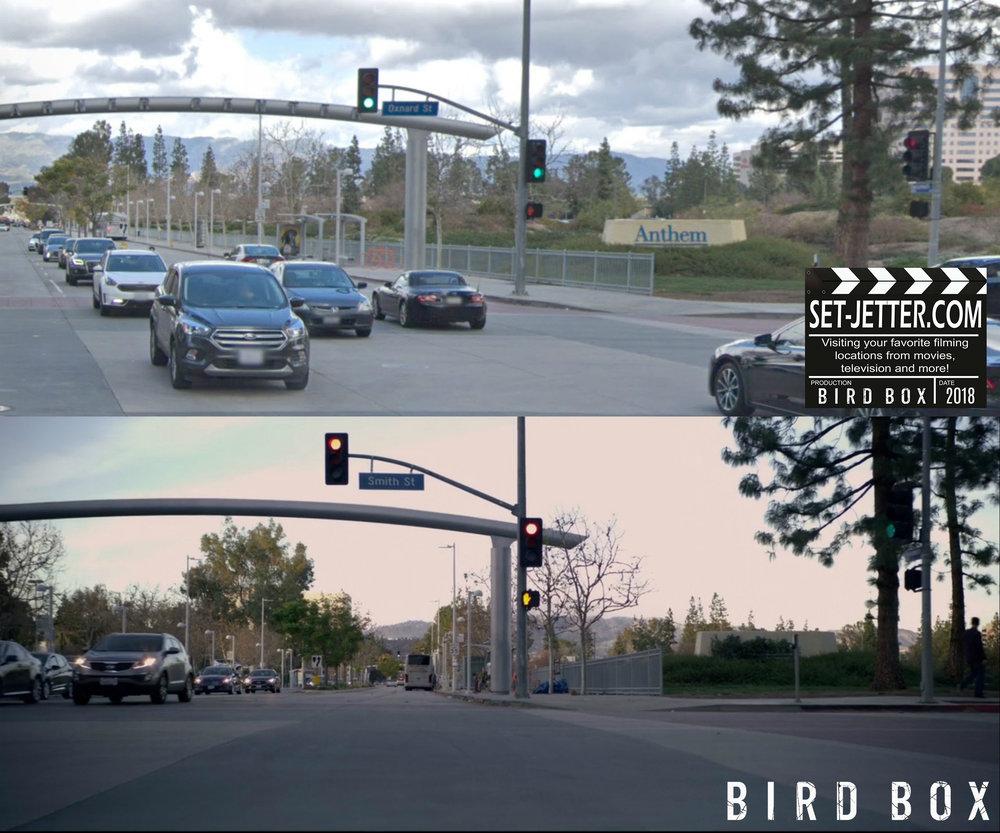 Bird Box Woodland 04.jpg