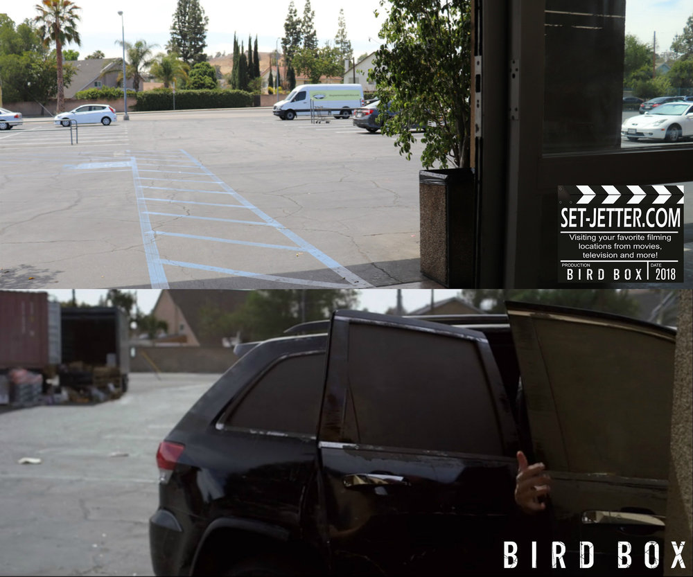 Bird Box Grocer 03.jpg