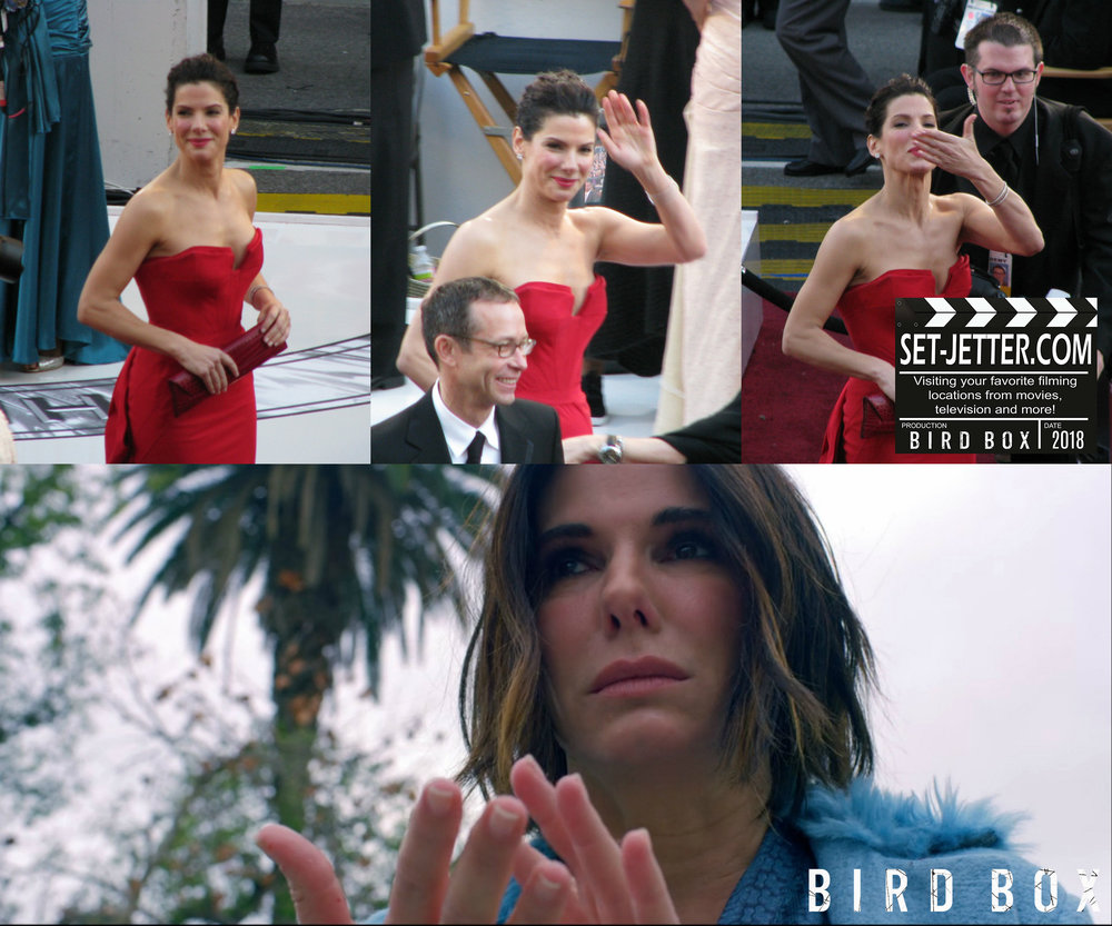 Bird Box Sandra Bullock.jpg