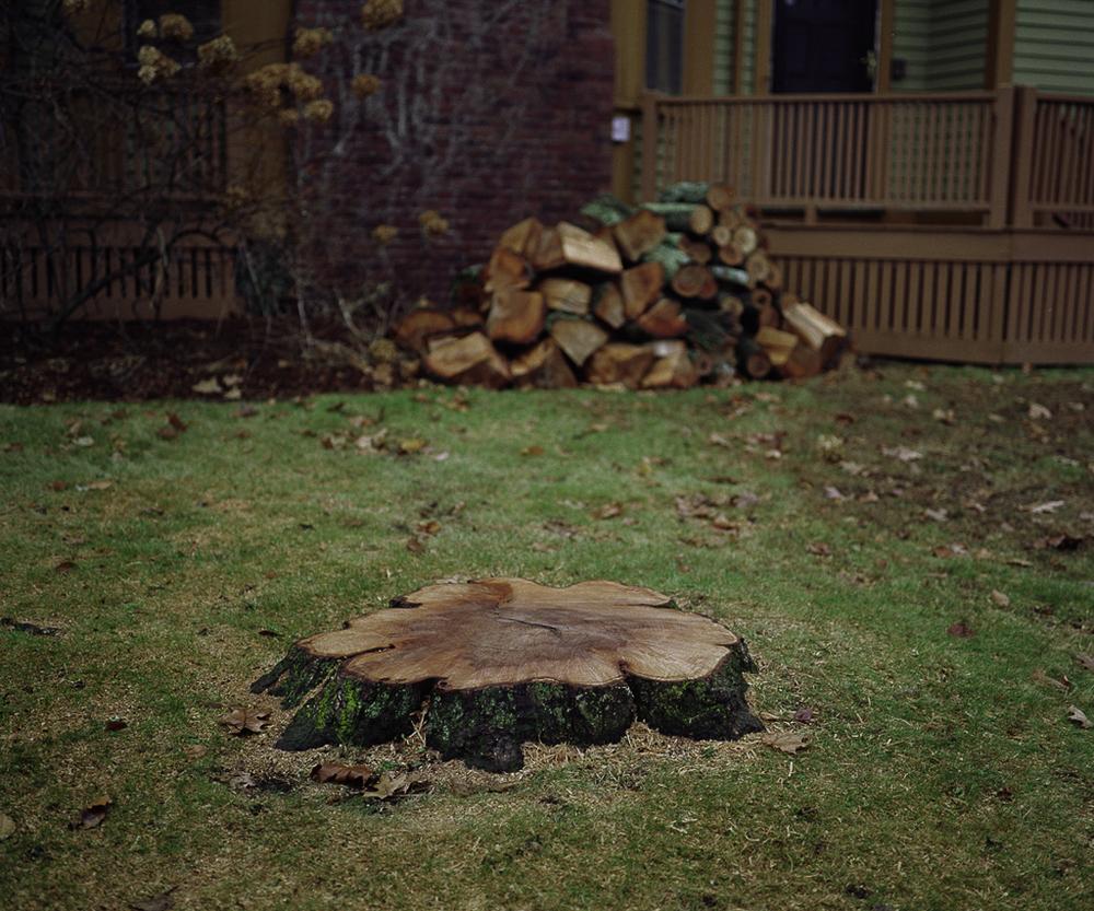 Stump, 2005