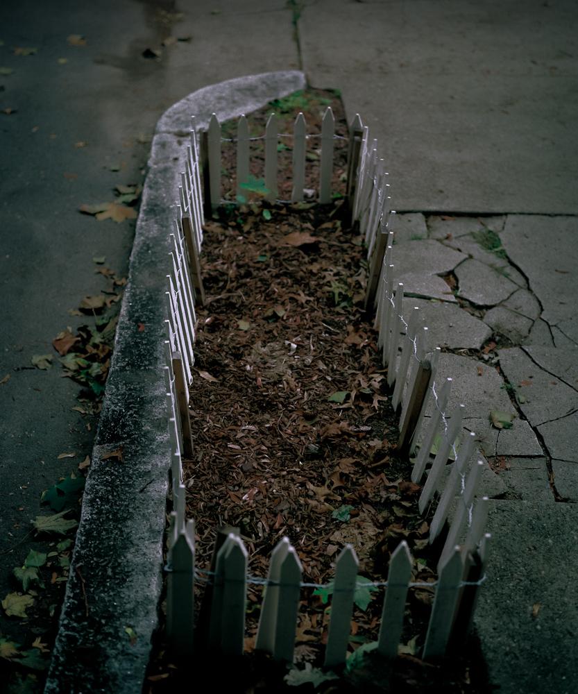 Sidewalk Garden, 2002
