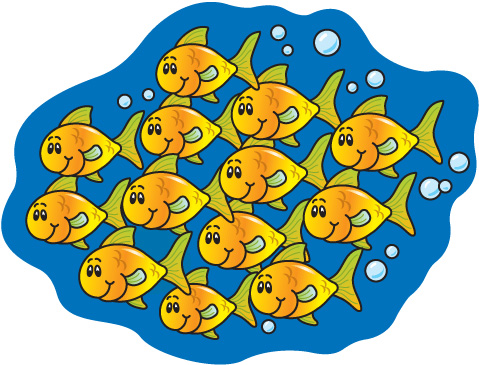A school of fish!