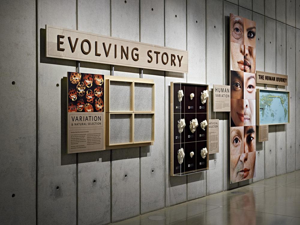 evolving_story.jpg