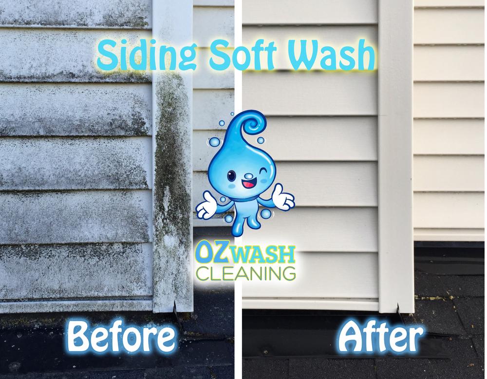 softwash8.jpg
