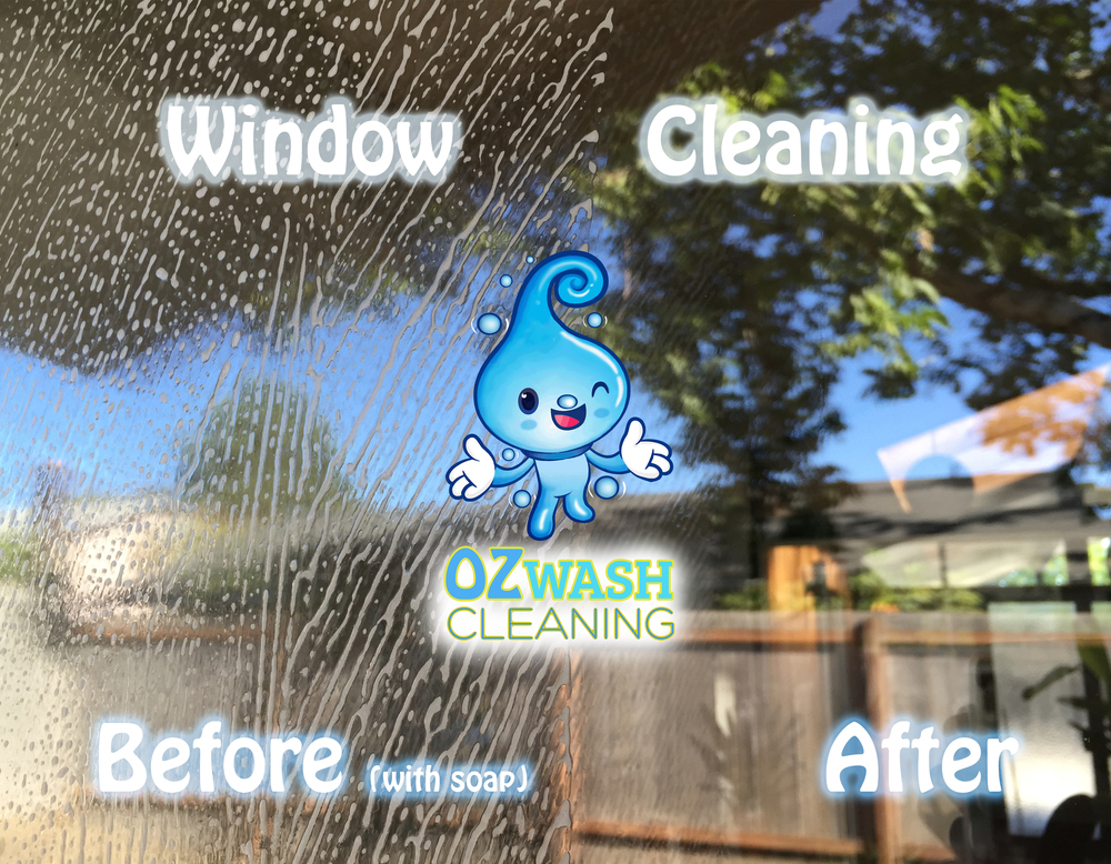 windowcleaning5.jpg