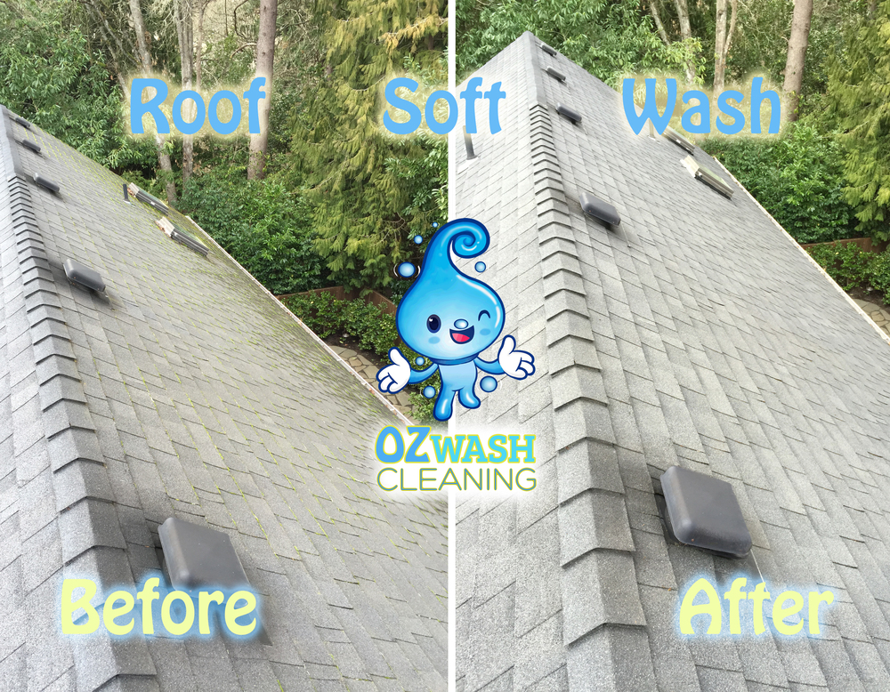 roofsoftwash1.jpg