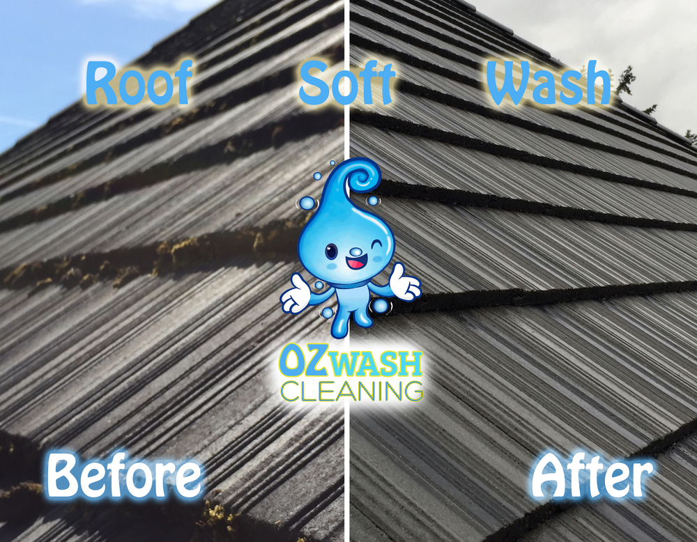 roofsoftwash5.jpg