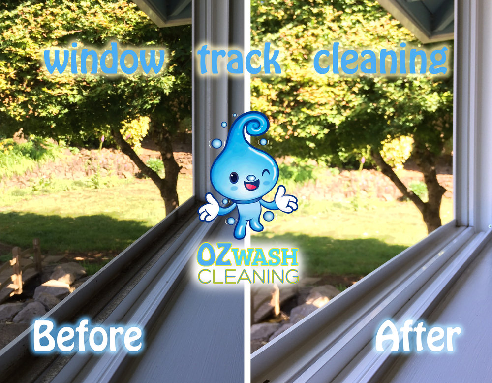 windowcleaning10.jpg