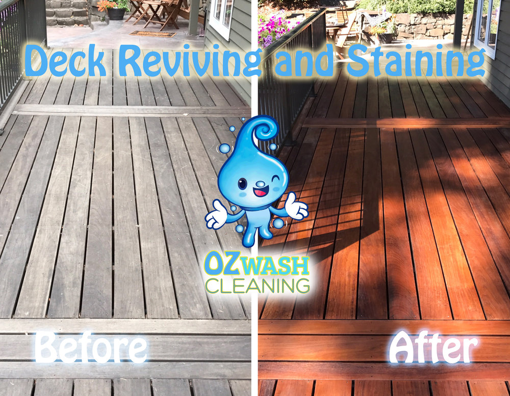 DeckReviving&Staining2.jpg