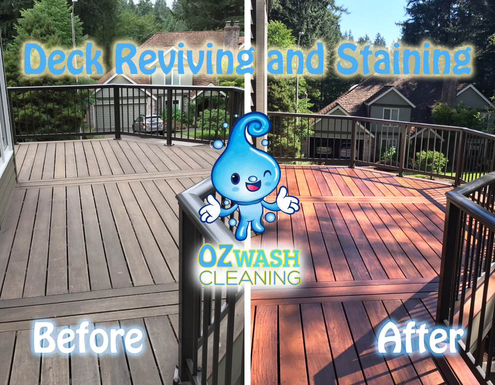 DeckReviving&Staining3.jpg