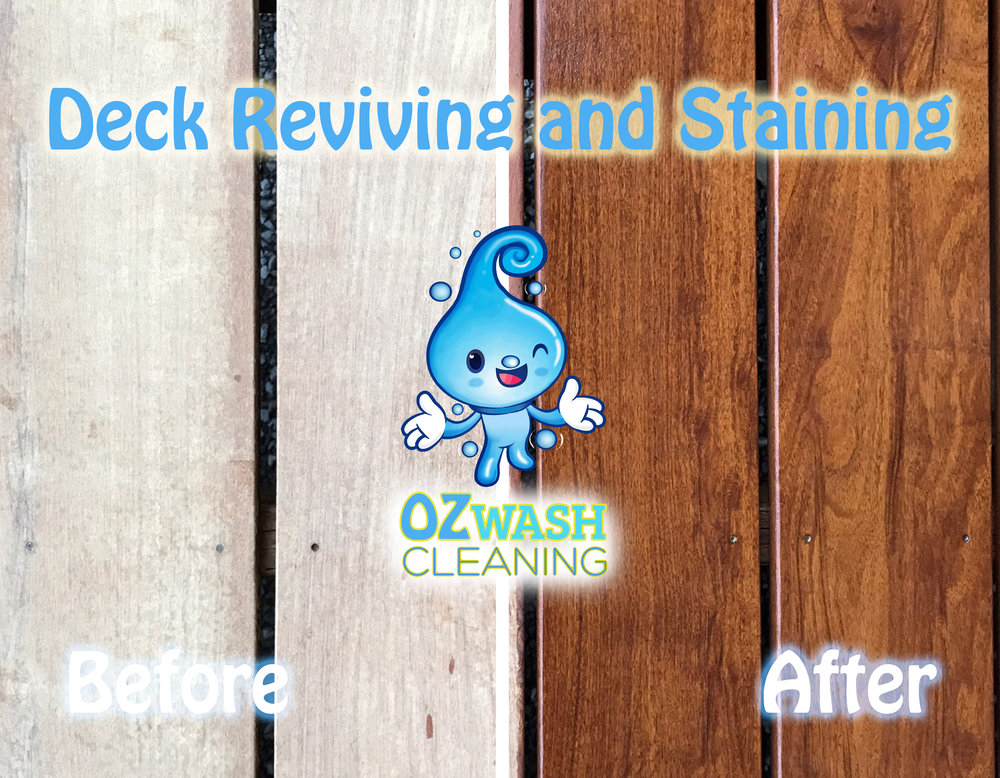 DeckReviving&Staining1.jpg