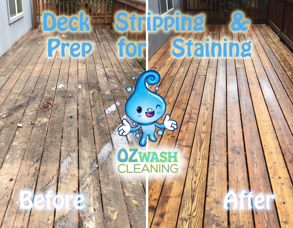 DeckReviving&Staining6.jpg