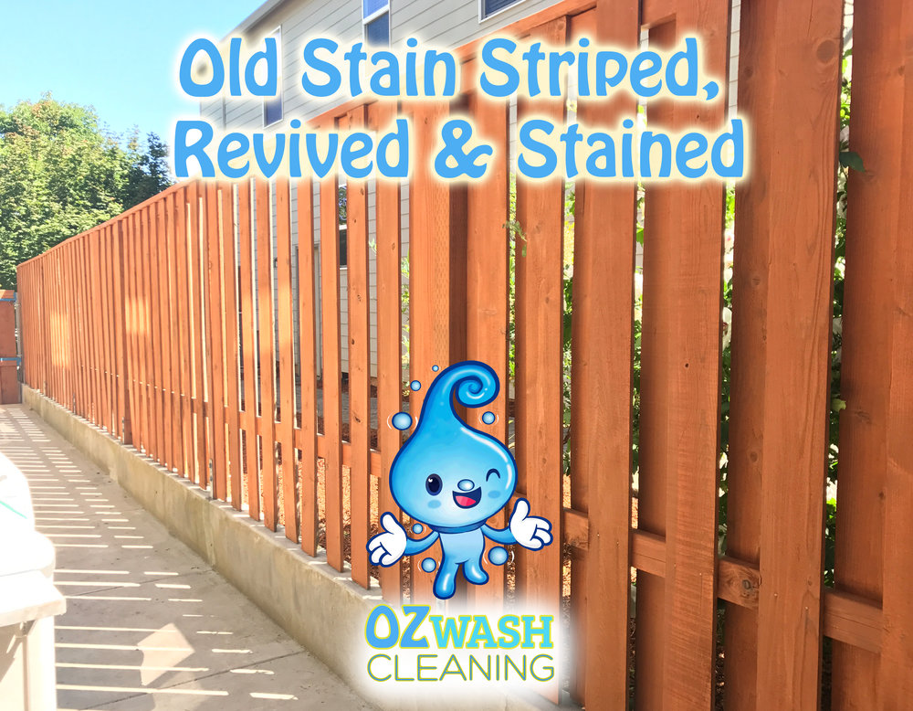Old Stain Stripping4.jpg