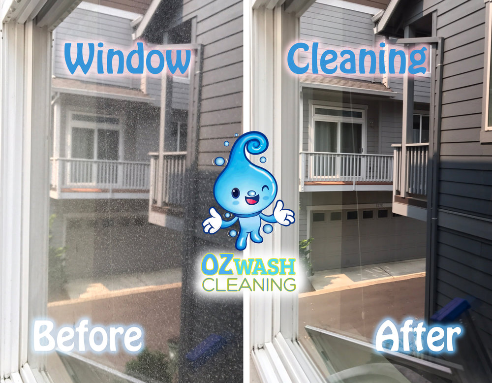 WindowCleaning6.jpg