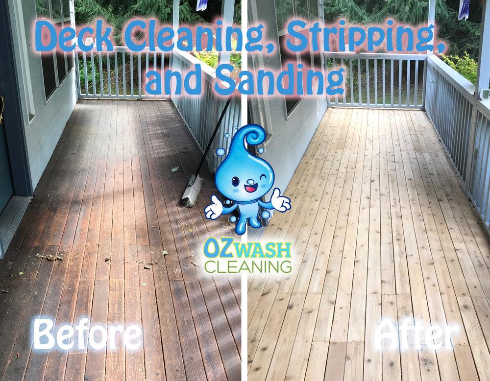 DeckStaining18.jpg