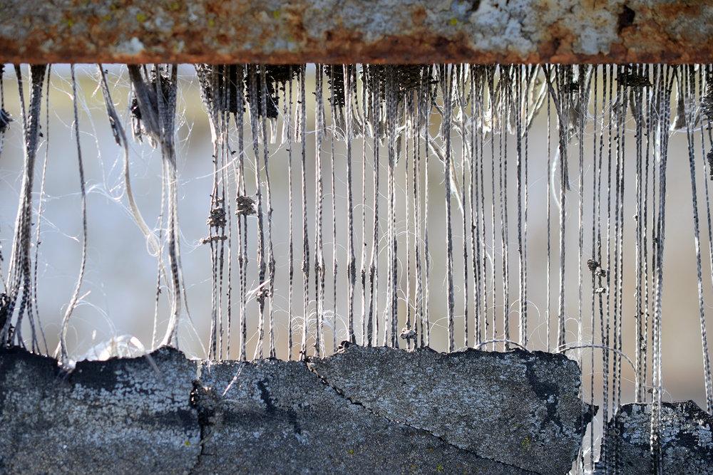 "HONORABLE MENTION  - Dan Lythcott-Haims | ""Fibers"" | Digital print on aluminum panel"