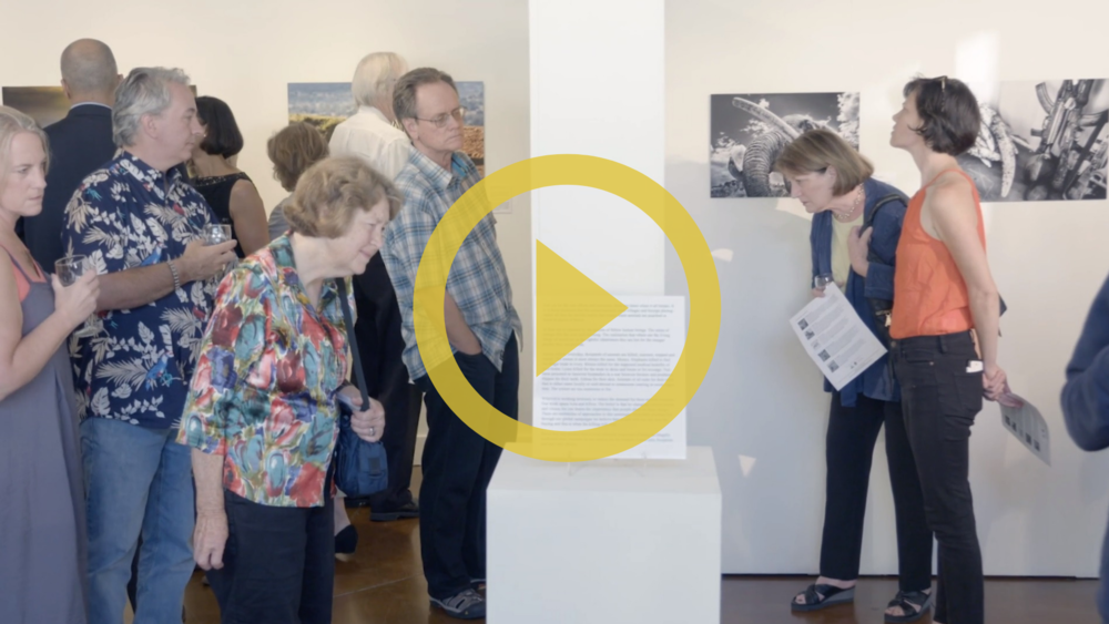 Click on image above to view video about the exhibition.
