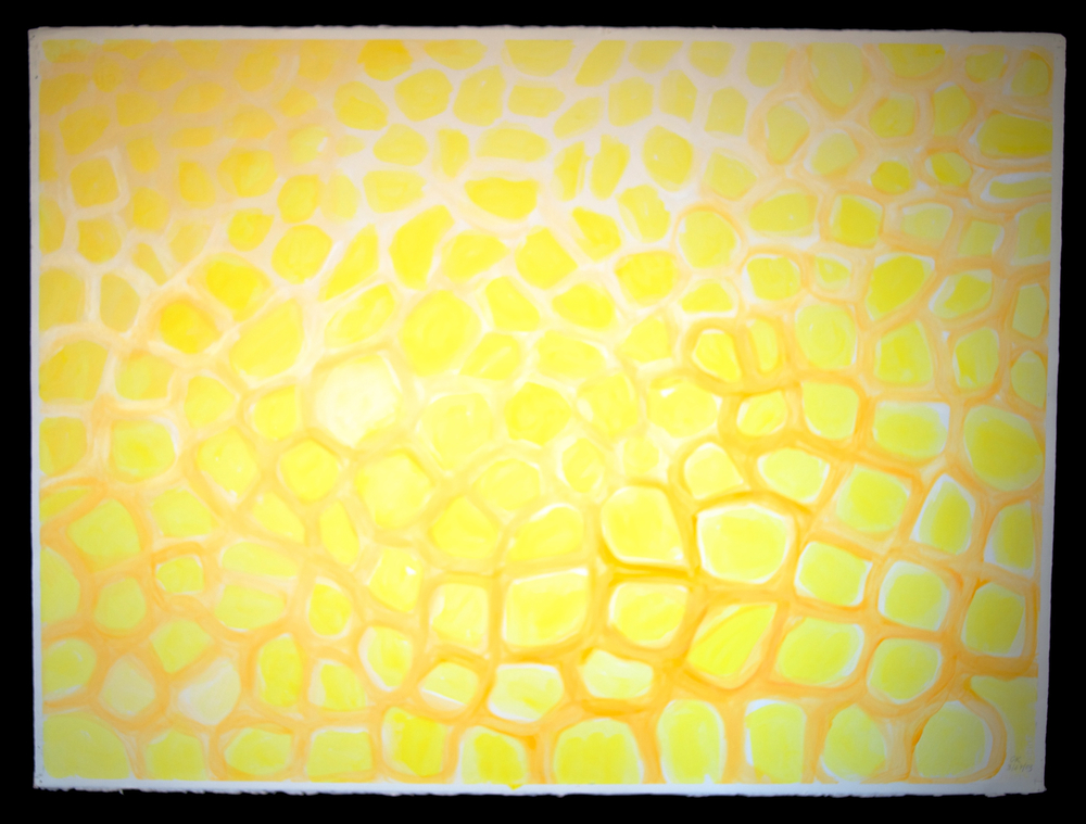 Mandala #9  acrylic on paper 22in x 30in