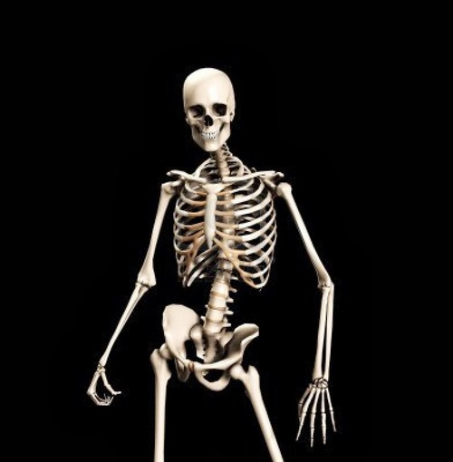 spooky skeleton.jpg