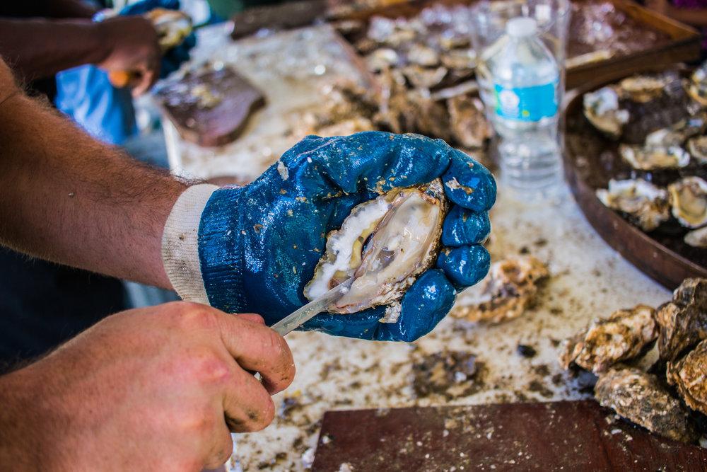 Oyster Fest-31.jpg