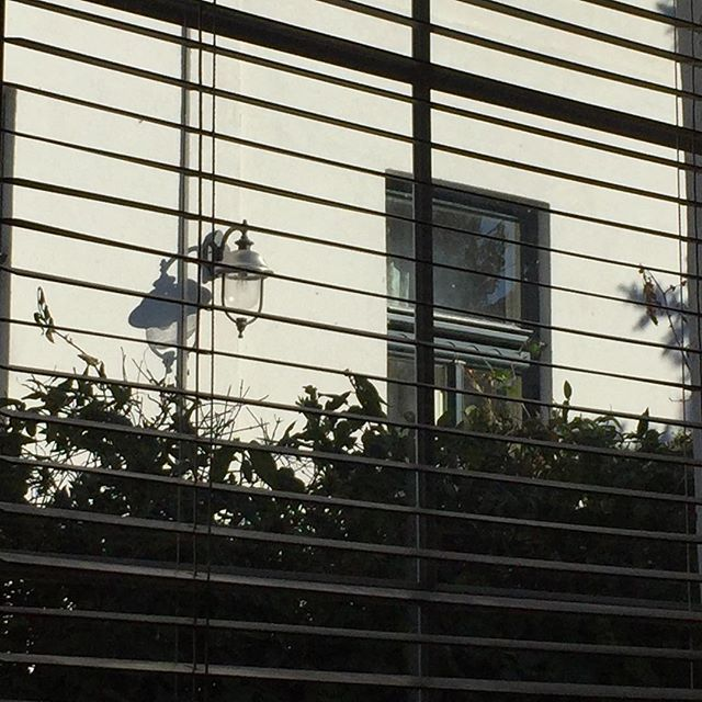 I liked the shadows . . . #shadowsandlight #window #blinds #light #peekingthrough