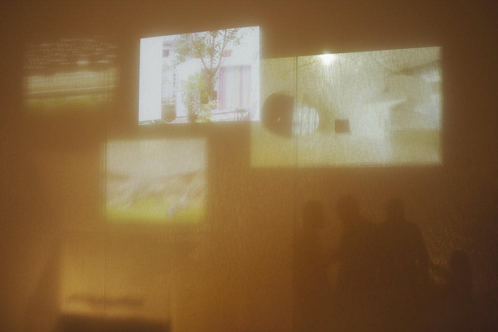 MoMAScreenSilhouettes1.jpg